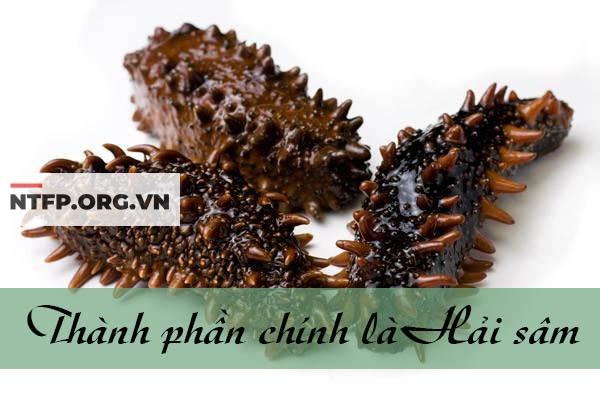 Hải sâm là thành phần chính trong Haisamin
